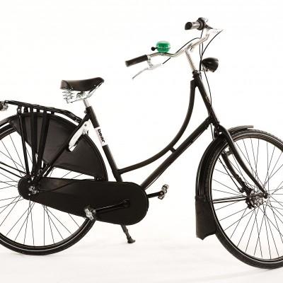 Bear Bicycle Ladies