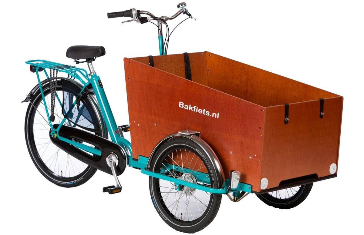 Bakfiets Cargo Trike Cargo Bike