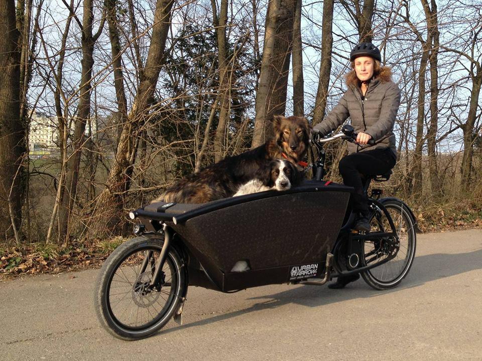 Urban Arrow Electric Cargo Bike Greenaer