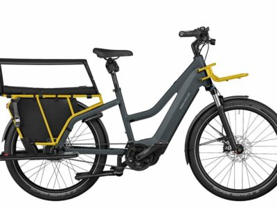 Electric Cargo Family Bikes